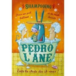 Carte Postale 10x15 «Pedro l'âne»