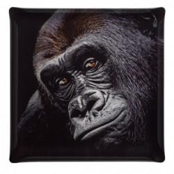 Plateau Acrylic 36x36 Portrait Gorille