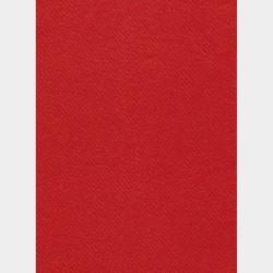 Nappe en papier 1,60x2,40m Uni Rouge