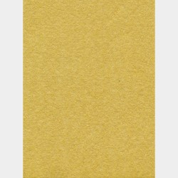 Nappe en papier 1,60x2,40m Uni Or